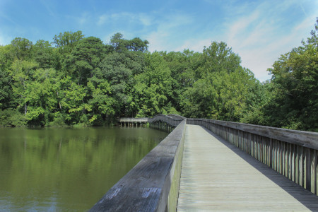 The Noland Trail in September at The Mariners' Museum Park