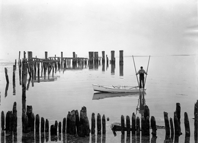 P585 Man tonging for oysters in Tilghman Island, Maryland. Photo by A. Aubrey Bodine