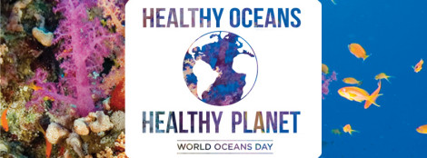 World Ocean Day